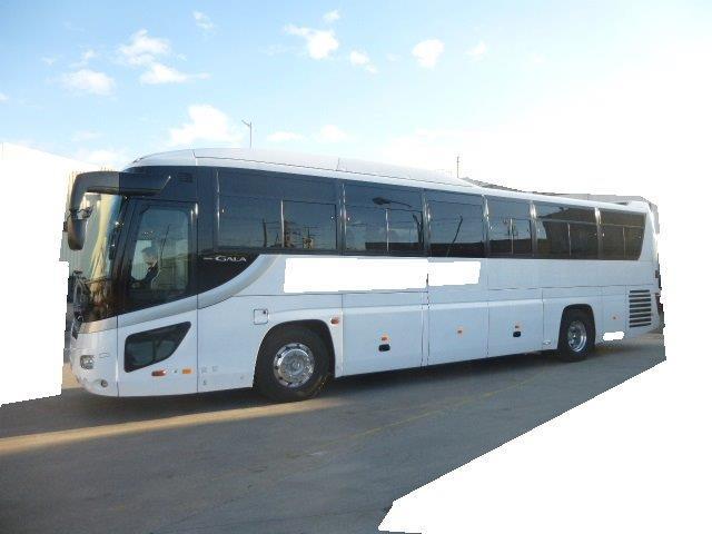 中古バス:いすゞPKG-RU1ESAJ改の画像-1